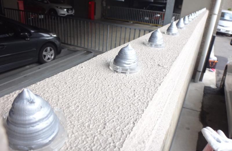 富山市のマンションの駐車場にバイバードを設置してきました。 サムネイル